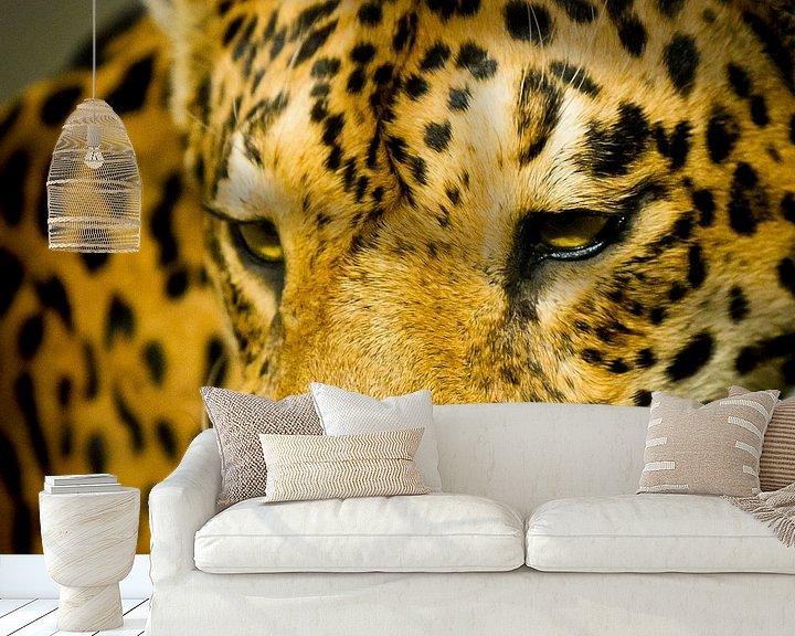 Sfeerimpressie behang: Luipaard van Robert Kersbergen