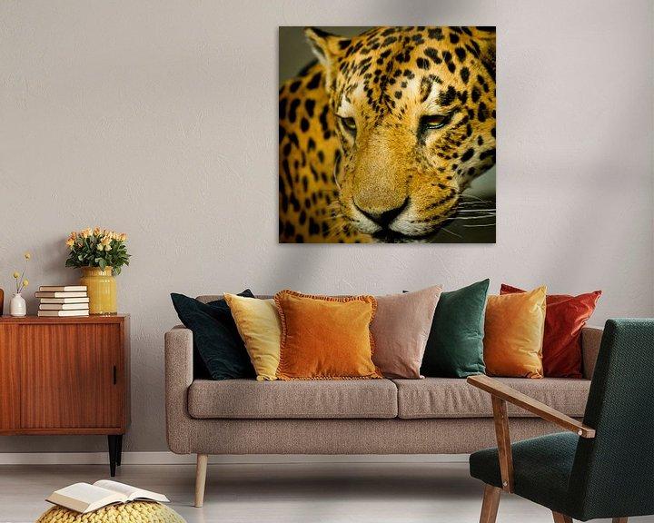 Sfeerimpressie: Luipaard van Robert Kersbergen