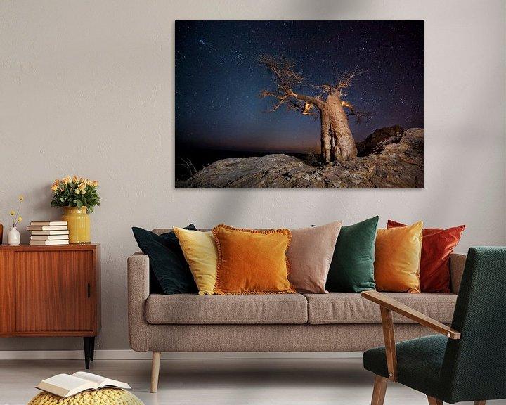 Sfeerimpressie: Nachtfoto van een Afrikaanse baobab (Adansonia digitata) tegen een sterrenlucht van Nature in Stock
