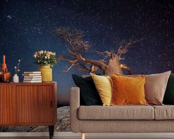 Sfeerimpressie behang: Nachtfoto van een Afrikaanse baobab (Adansonia digitata) tegen een sterrenlucht van Nature in Stock