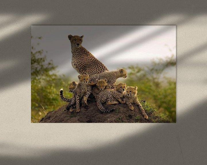 Sfeerimpressie: Moeder Jachtluipaard (Acinonyx jubatus) met zes welpen op de uitkijk op een termietenheuvel van Nature in Stock