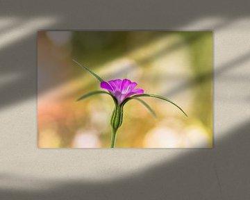 Flowerful