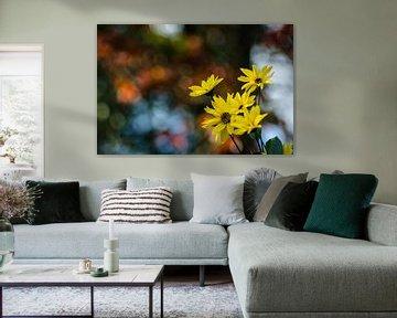 Autumn flowers von Dick Nieswaag