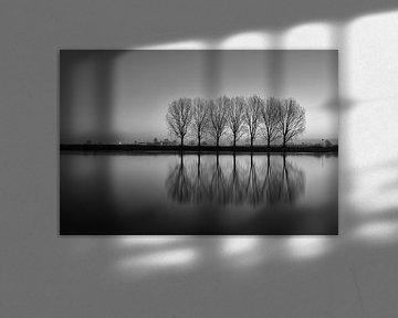 7 Bäumen IJssel - Dieren von Mart Stevens