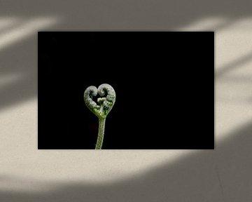 Natur liebe von Adri Vollenhouw