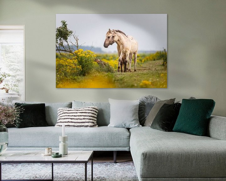 Sfeerimpressie: Twee konikpaarden van Pim Leijen