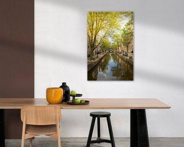Amsterdam Oudezijds Achterburgwal tijdens de zomer van Sjoerd van der Wal