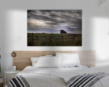 schapenboet Texel van Jitske Cuperus-Walstra