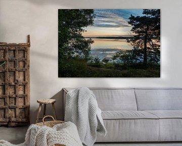 Schärengarten an der schwedischen Küste vor Stockholm von Rico Ködder