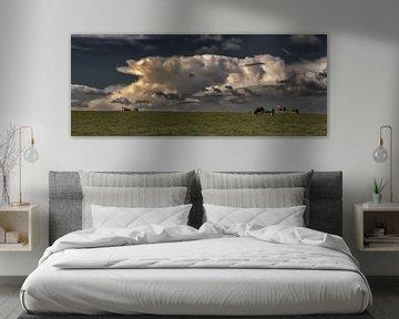 Onweer cloud-koeien in de wei van Christine Nöhmeier