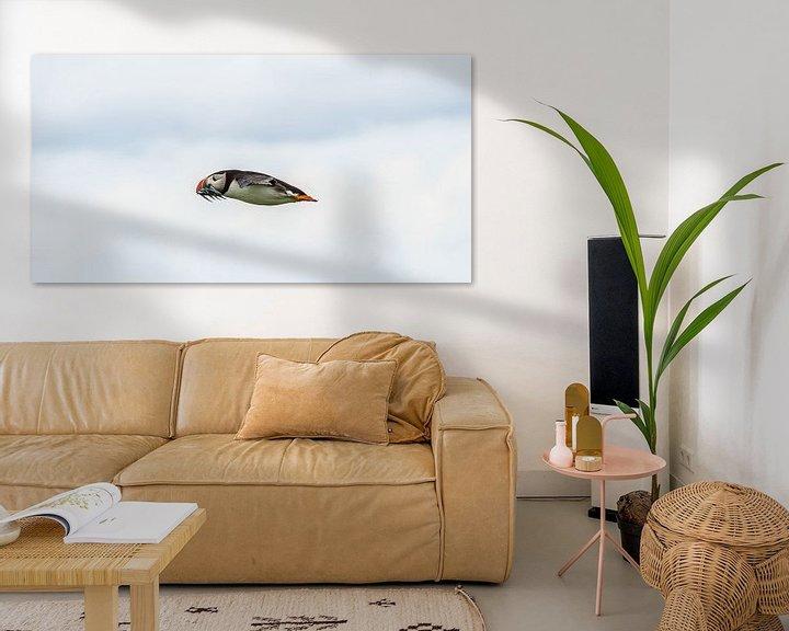 Sfeerimpressie: Papegaaiduiker als een speer van Robin Voorhamm