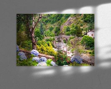 Pyreneeën von Johan Habing