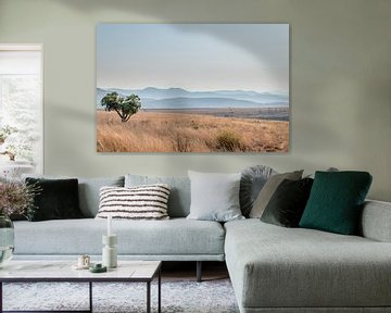 Savanne Afrika von Mark den Boer