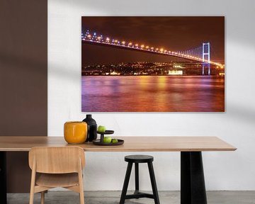 Bosporusbrug Istanbul van Dana Schoenmaker