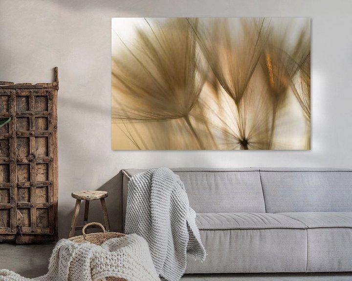 Sfeerimpressie: Touched by sunlight van Birgitte Bergman