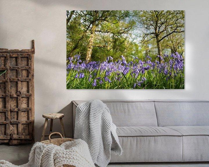 Sfeerimpressie: Bloeiende boshyacinten in een Engels eikenbos van Nature in Stock