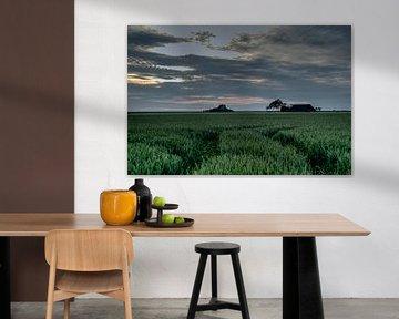 Dreaming of van Aline van Weert