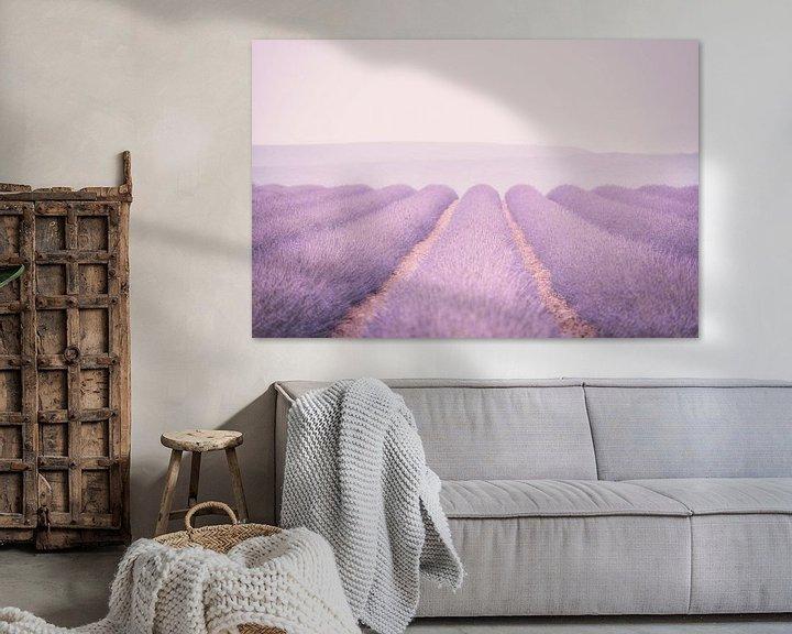 Sfeerimpressie: lavendel van Hilde Van Hove