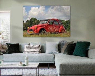 Citroën 2cv in het gras sur Theo Joosten