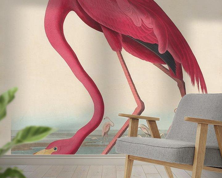 Beispiel fototapete: Amerikanischer Flamingo - John James Audubon