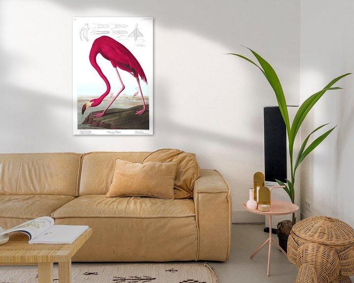 Beispiel: Amerikanischer Flamingo, John James Audubon
