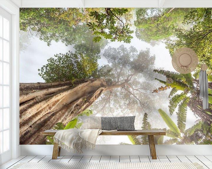Sfeerimpressie behang: Hoge boom in Thailand van Marcel Derweduwen