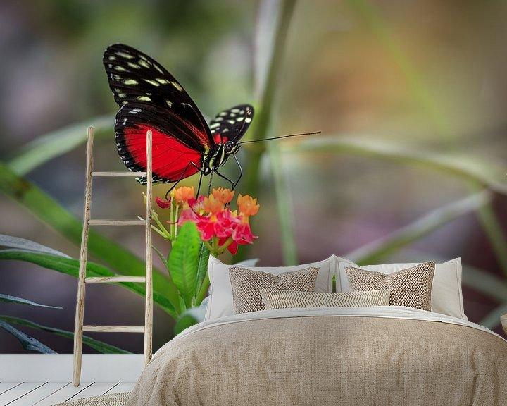 Sfeerimpressie behang: Rode Heliconius Hecale Vlinder van Tim Abeln