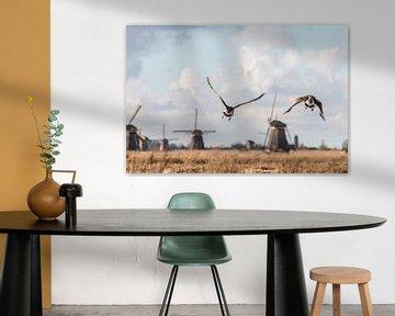 Vliegende ganzen in Kinderdijk van Mark den Boer
