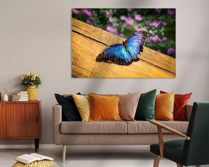 Sfeerimpressie: Blauwe Morpho Vlinder op een houten plank van Tim Abeln