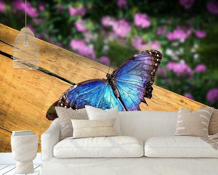 Sfeerimpressie behang: Blauwe Morpho Vlinder op een houten plank van Tim Abeln