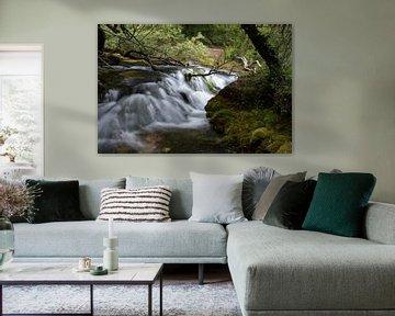 Watervallen Vevceni van Tilja Jansma