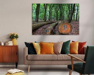 Bosbouw van Marc Arts