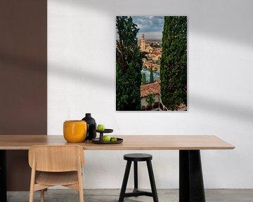 Verona, Italie  von Thomas Bartelds