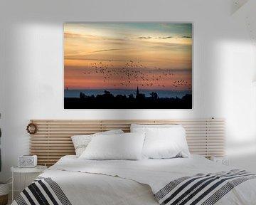 Vogels in de ochtendlucht boven Warstiens van Tilja Jansma