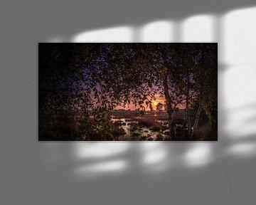 Zonsondergang op het Wierdense veld