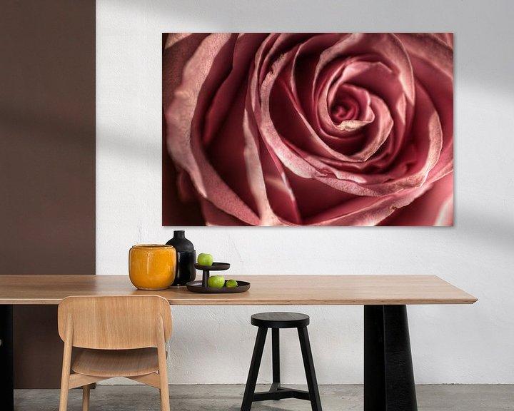 Sfeerimpressie: Rose van Mike Bing