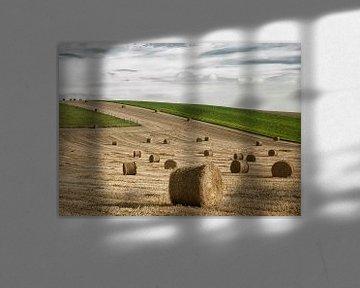 Oogsten in Picardie von Ellen Driesse