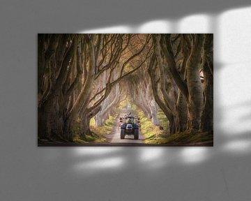 Een naderende tractor door de Dark Hedges van Roelof Nijholt