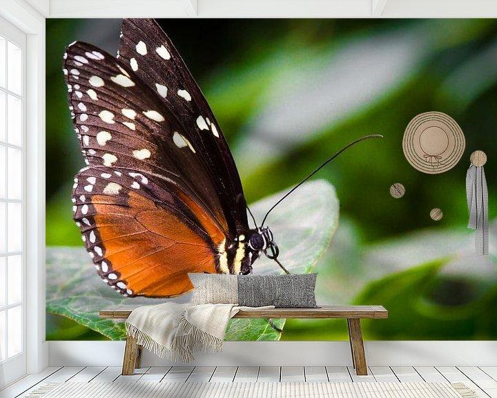 Sfeerimpressie behang: Vlinder van Sybren Visser
