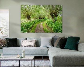 Sandweg zwischen den Bäumen von Ruud Morijn