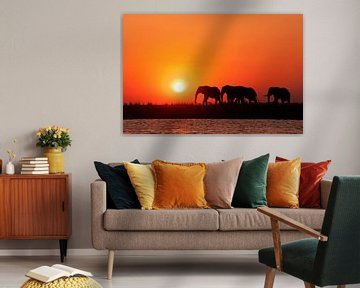 Afrikaanse zonsondergang Botswana van Lotje Hondius
