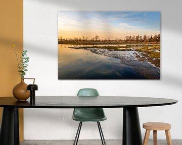 Overstroomd land aan het begin van de winter van Ruud Morijn