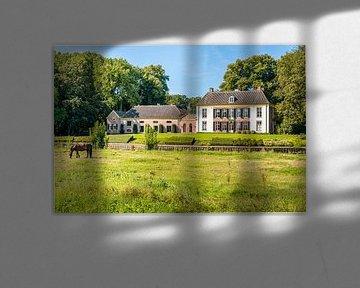 Nederlands kasteel met koetshuis van Ruud Morijn