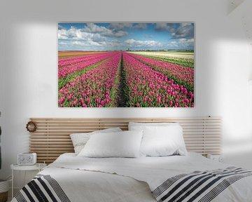 Kleurige tulpenvelden in Oost Flakkee von Ruud Morijn
