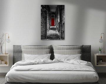 the red door van Robin Pics (verliefd op Utrecht)