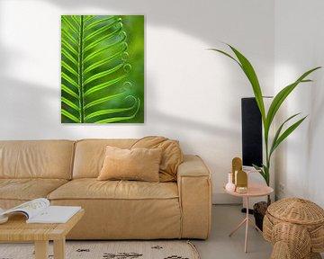 Nature's Green (Varenblad in groen) van Caroline Lichthart