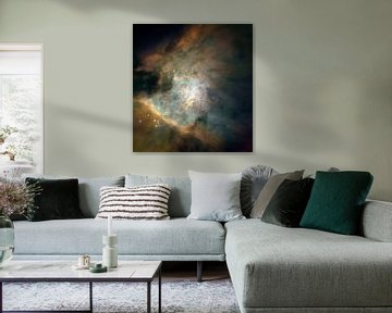 Orion Nebula van Moondancer .