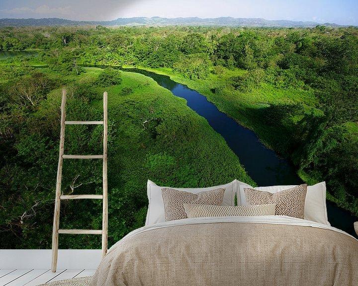 Sfeerimpressie behang: Luchtopname van de  Chagres rivier in Soberania National Park, Panama van Nature in Stock