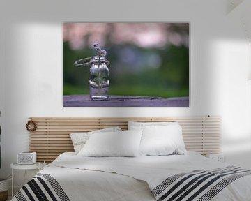 Gänseblümchen im Glas von zwergl 0611
