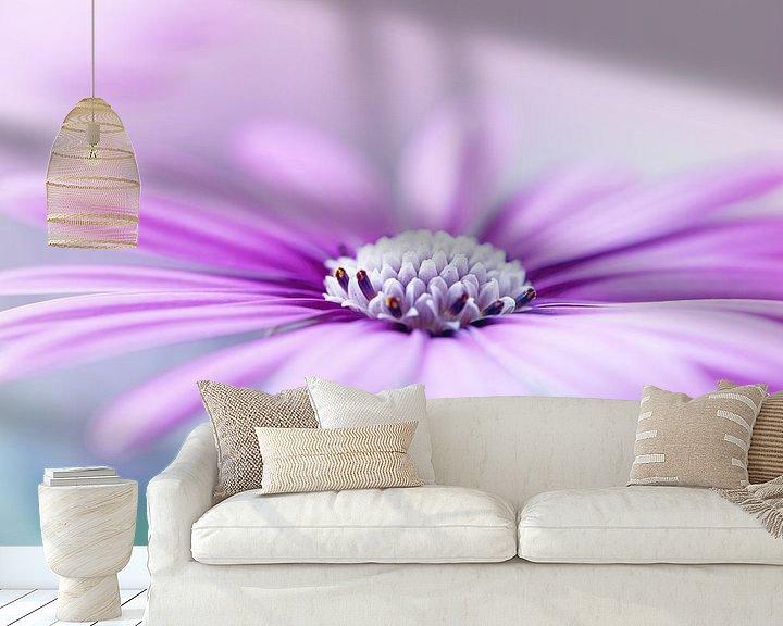 Sfeerimpressie behang: Paarse margriet van LHJB Photography